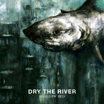 Dry The River, Shallow Bed