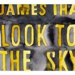 James Iha, Look To The Sky