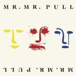 Mr. Mister, Pull
