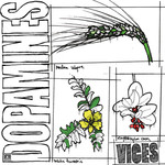 The Dopamines, Vices
