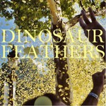 Dinosaur Feathers, Whistle Tips