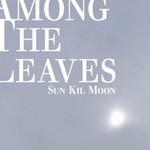 Sun Kil Moon, Among The Leaves