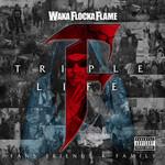 Waka Flocka Flame, Triple F Life: Fans, Friends & Family
