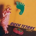 Bush Tetras, Happy