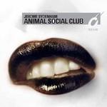 Jerome Sydenham, Animal Social Club