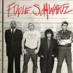 Eddie Schwartz, Public Life