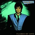 Fancy, Flames Of Love