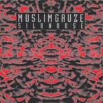 Muslimgauze, Silknoose