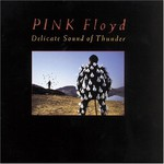 Pink Floyd, Delicate Sound Of Thunder