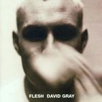 David Gray, Flesh mp3