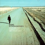 Echo & The Bunnymen, What Are You Going to Do With Your Life? mp3