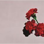 John Legend, Love in the Future