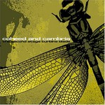 Coheed and Cambria, The Second Stage Turbine Blade
