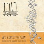Toad the Wet Sprocket, New Constellation