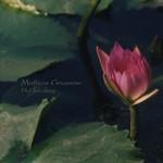 Mathias Grassow, Hidden Deep