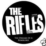 The Rifles, The Dreams Of A Bumblebee