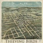 Thieving Birds, Thieving Birds