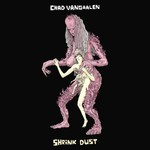 Chad VanGaalen, Shrink Dust