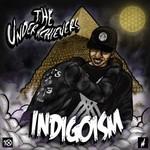 The Underachievers, Indigoism