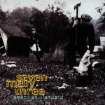 Seven Mary Three, American Standard