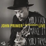 John Primer & The Teardrops, You Can Make It If You Try mp3