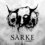 Sarke, Aruagint
