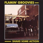 Flamin' Groovies, Shake Some Action
