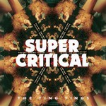 The Ting Tings, Super Critical