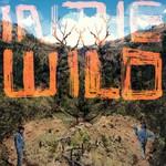 FaltyDL, In The Wild