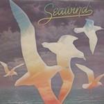 Seawind, Seawind 1980