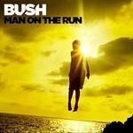 Bush, Man on the Run mp3