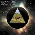 Gov't Mule, Dark Side Of the Mule mp3