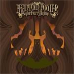 Super Furry Animals, Phantom Power