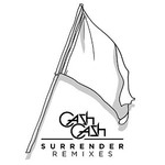 Cash Cash, Surrender Remixes