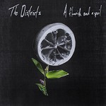 The Districts, A Flourish and a Spoil mp3