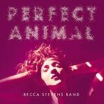 Becca Stevens Band, Perfect Animal