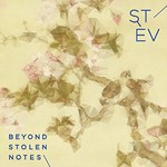 Stev, Beyond Stolen Notes