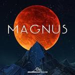 audiomachine, Magnus