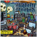 Slightly Stoopid, Meanwhile... Back at the Lab
