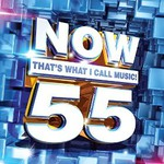 Various Artists, Now That's What I Call Music! 55 mp3