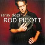 Rod Picott, Stray Dogs