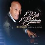 Bob Baldwin, Mellowonder/Songs In The Key Of Stevie