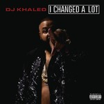 DJ Khaled, I Changed a Lot mp3