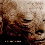 4ARM, 13 Scars