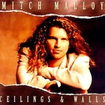 Mitch Malloy, Ceilings & Walls