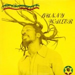 Bunny Wailer, Rock 'n' Groove