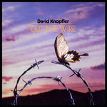 David Knopfler, Cut The Wire