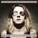 The Virginmarys, Divides