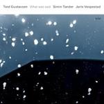 Tord Gustavsen, Simin Tander & Jarle Vespestad, What Was Said