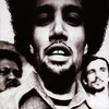 Ben Harper, The Will to Live